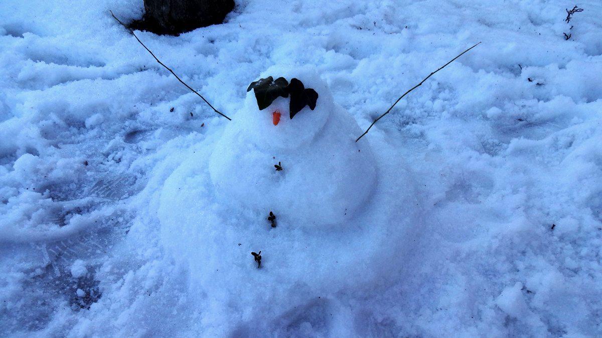 bonhomme_de_neige_1